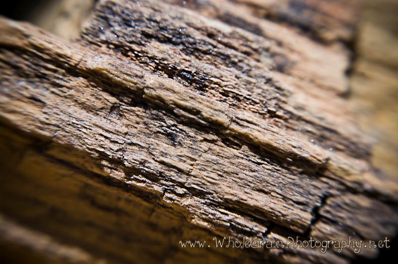 20100414_rocks_7708