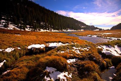 Poudre Lake near Milner Pass