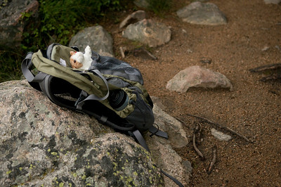On a walk in the Rocky Mountain National Park, Colorado. Lyn's pack, complete with mascot (without which it wouldn't be complete).