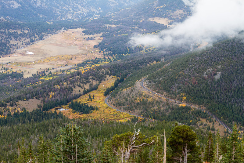 You are viewing Trail Ridge Road. This road will take you to the Alpine Tundra and the Visitors Center.