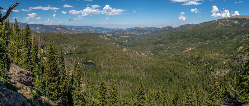 View down Glacier Creek from the trail above Bear Lake