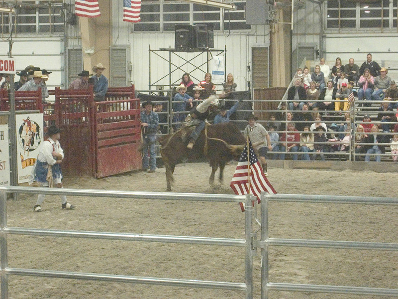 Rodeo 2008