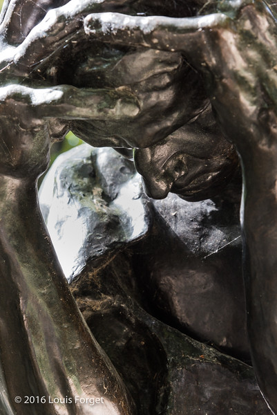 Rodin-6036