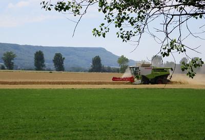 Claas Lexion 770 combine harvester