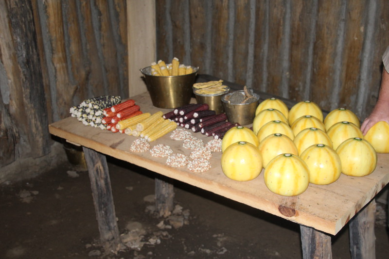 Wide varieties of foodstuffs were discovered and traded for with nearby Indians.