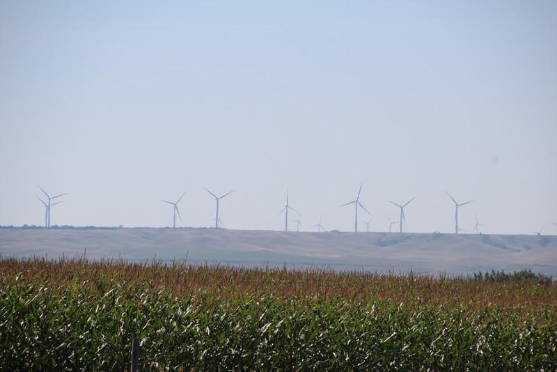 Windmill Farm Ahead.