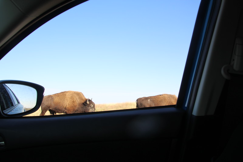 They ignored me as they went by.