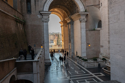 View fro the Vatican Museum