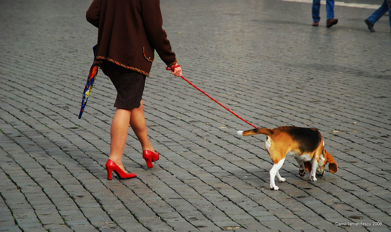 Red high-heelers