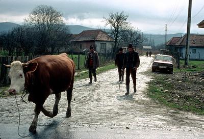 Romania_b1_r1_001