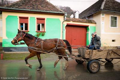 A horse carriage in Viscri