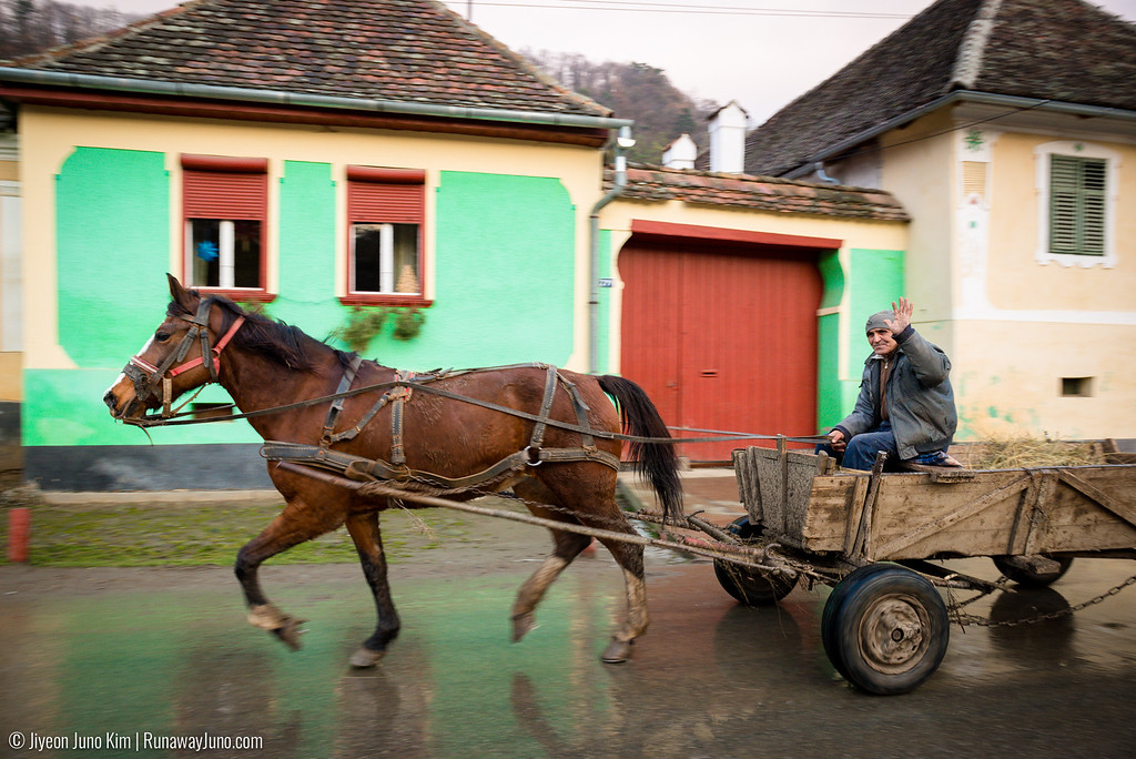 A horse carriage in Mălâncrav