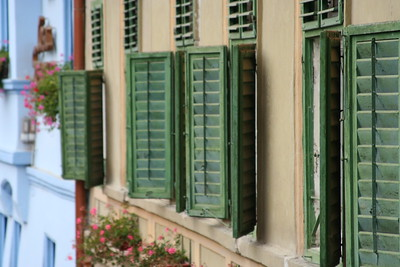 Sigisoara Windows
