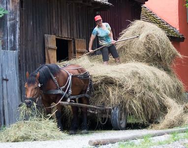 unloadin the hay wagon