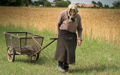 still gathering hay at 85