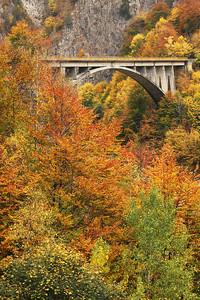 Autumn in the Transfagarashan road...