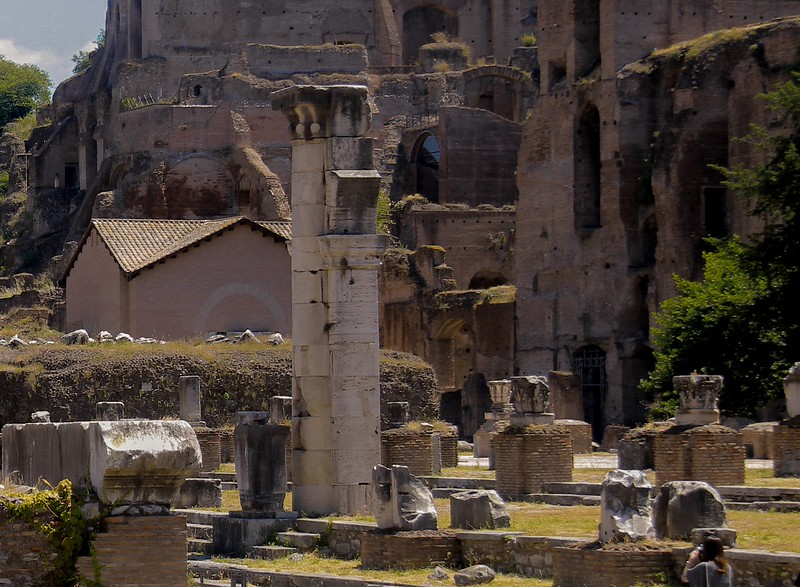 The only column left of the many columns that made up the Basilica Lulia, a key assembly hall in ancient Rome.