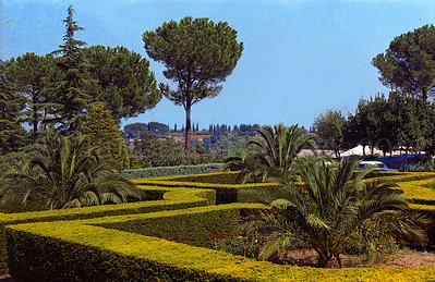 The Loyola University of Chicago Rome Center campus/1970:  Some well pruned hedges on the girls side of the Villa