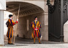 The Papal Swiss Guard, yet to master the art of camouflage