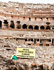 Piglet breaking all the rules at the Colosseum