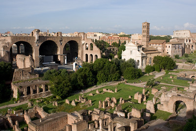 Roman Forum from Palatine Hill