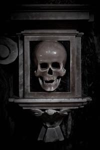 The Skull at Santa Maria sopra Minerva