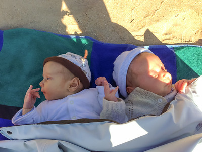 Orlando (left) and Sebastian (right) on Rosedale Beach - July 2014