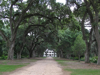 Rosedown Plantation and Grace Episcopal Church Cemetery