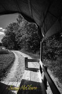 Rear view from a horse drawn wagon on a dirt track. Ross Farm Museum, Nova Scotia.