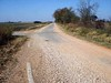 A RETURN TO ASPHALT<br /> Abandoned Route 66 Section, Oklahoma<br /> <br /> Soon, I found the mainly dirt road returning once again to asphalt (why or how this happened, I have no idea) and was amazed at the extremely narrow width of the roadway. If I put my Ford Ranger's right wheels on the edge lines (curb? fog line?), its left wheels would extend well over the road's centerline. I still find this curioius, as would they build a road barely big enough for two cars to pass? Very curious, indeed.