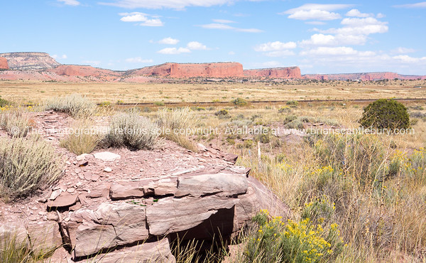 Stunning natural landscapes along Historic Route 66, New Mexico, USA.