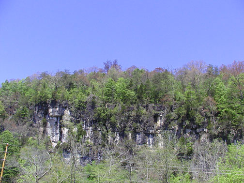 Lovely Bluff, Caryville, TN<br /> View heading to Savage Rock Garden<br /> April 28. 2007