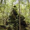 Savage Rock Garden 4<br /> Caryville TN<br /> 4/28/07