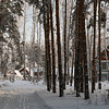 <p>Winter in Berdsk, Siberia, Russia.</p>