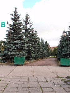 Another big surprise - Christmas trees everywhere in Russia.  Amazing. We're walking into a big sculpture garden across from Gorky Park.
