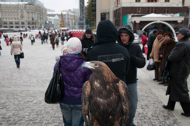 Lots of people at Red Square - this big monster bird (hawk? falcon?) landed to see what was happening.  Heh, no really - was with two monkeys and two Russians selling photo ops.