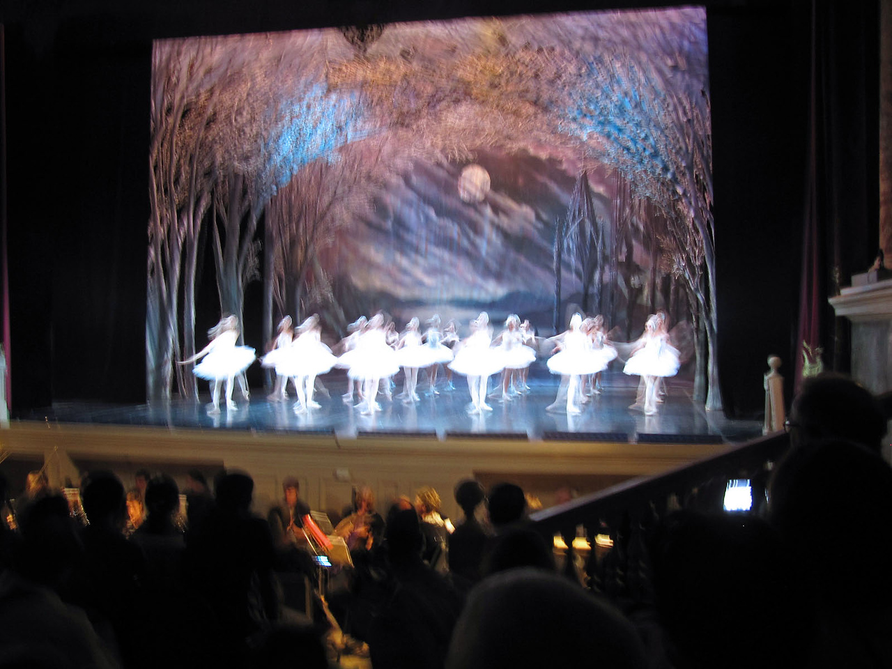 "Performance of ""Swan Lake"