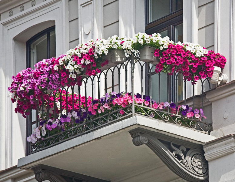 Flowered balcony next to a canal.