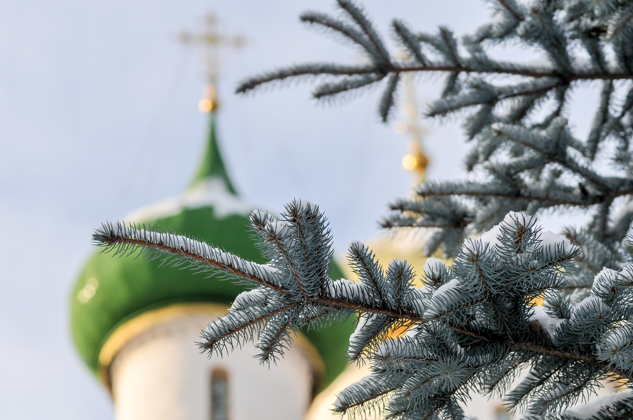 Monastery of Saint Euthymius - Suzdal, Russia