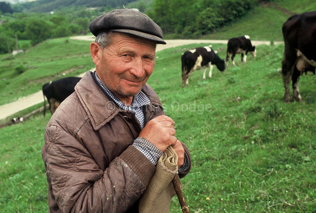 Cattle Herder, Western Ukraine.