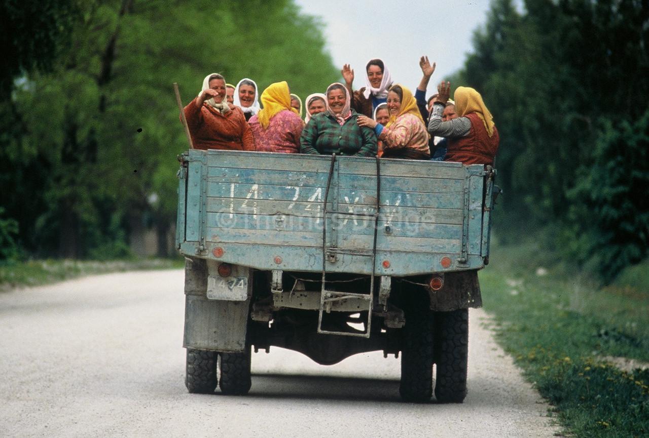 Field workers on lunch break, Ukraine
