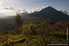 View of Virunga Mountains