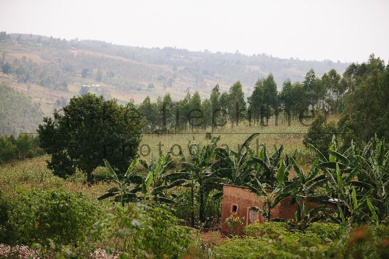 2013-Rwanda-photo-2041