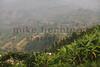 2013-Rwanda-photo-2475