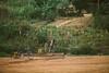 2013-Rwanda-photo-2916