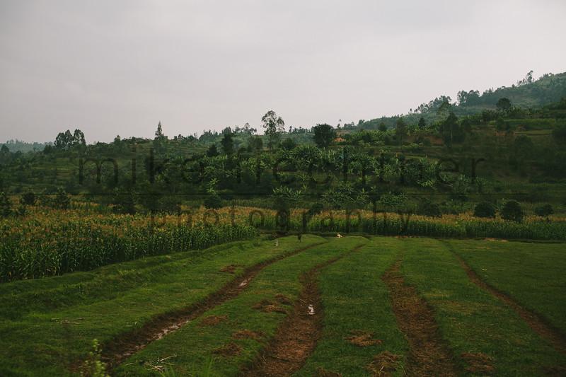 2013-Rwanda-photo-2525