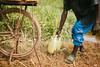 2013-Rwanda-photo-2077