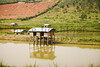 2013-Rwanda-photo-1903