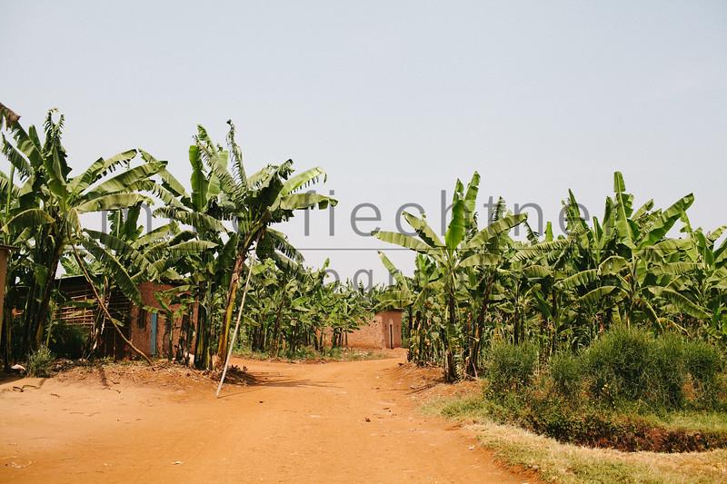 2013-Rwanda-photo-1935