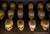 Genocide Victim Skulls